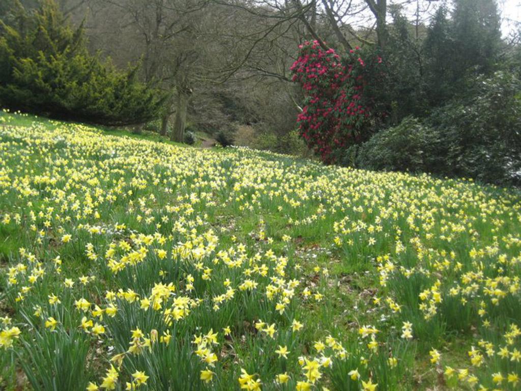 spring at perrycroft
